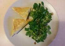 Samoussas de poulet au curry au four (ElodieN)