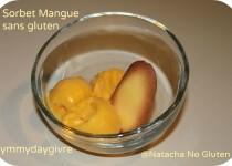 Sorbet Mangue – sans lait et sans gluten (Natacha)